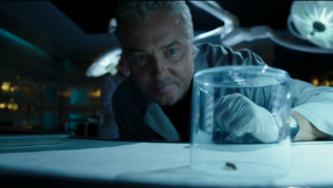 Of course insects are involved. It's Grissom after all!