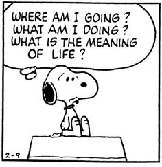 Even Snoopy felt this way... until it was suppertime.